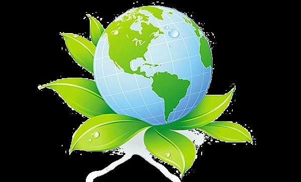 экологичный бизнес
